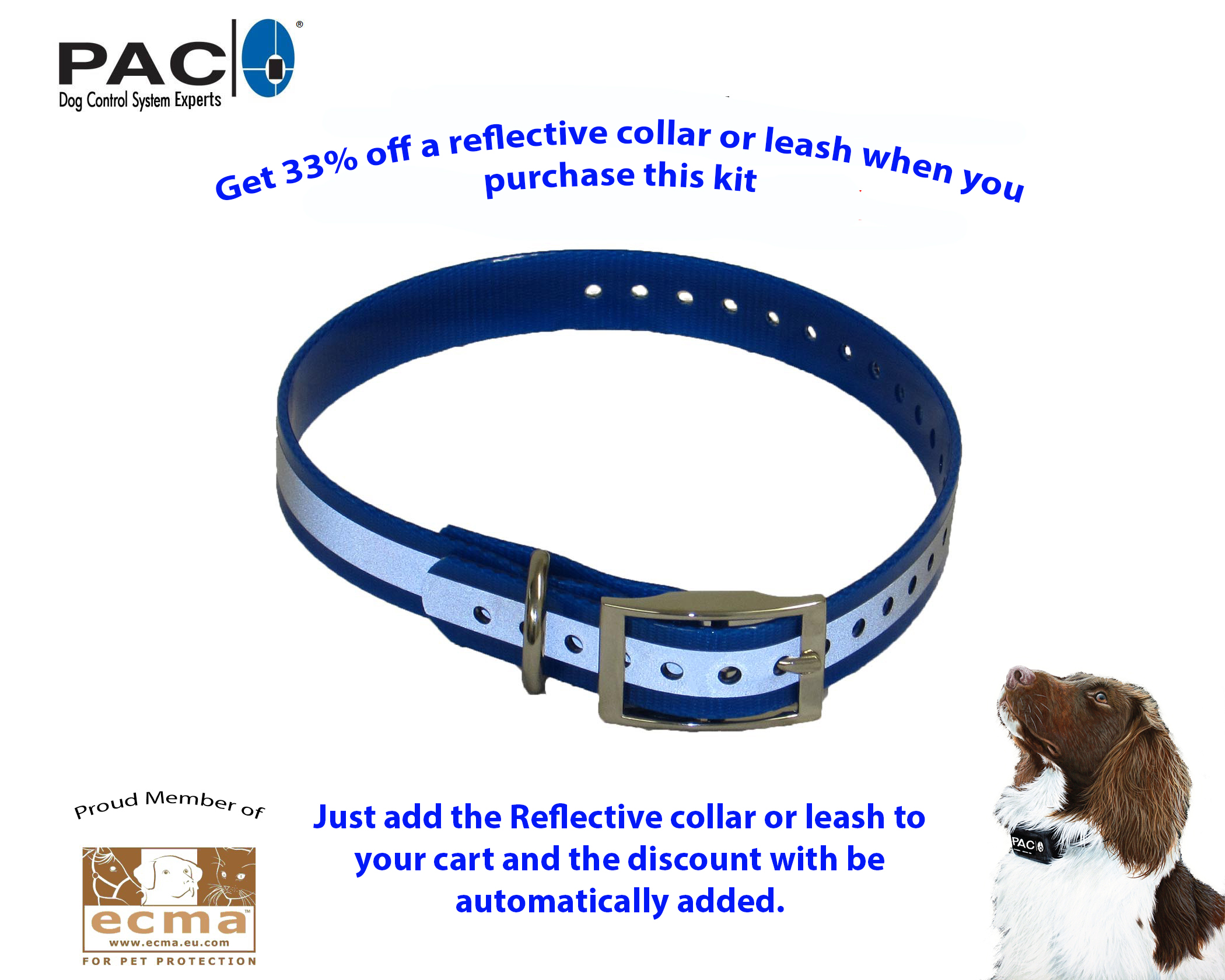 Reflective Collar and Leash - special offer
